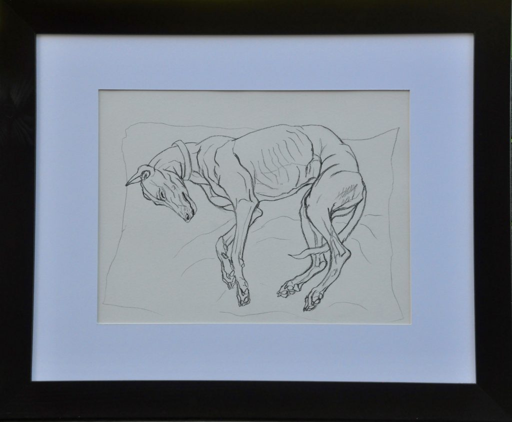 Pencil drawing of a dog sleeping