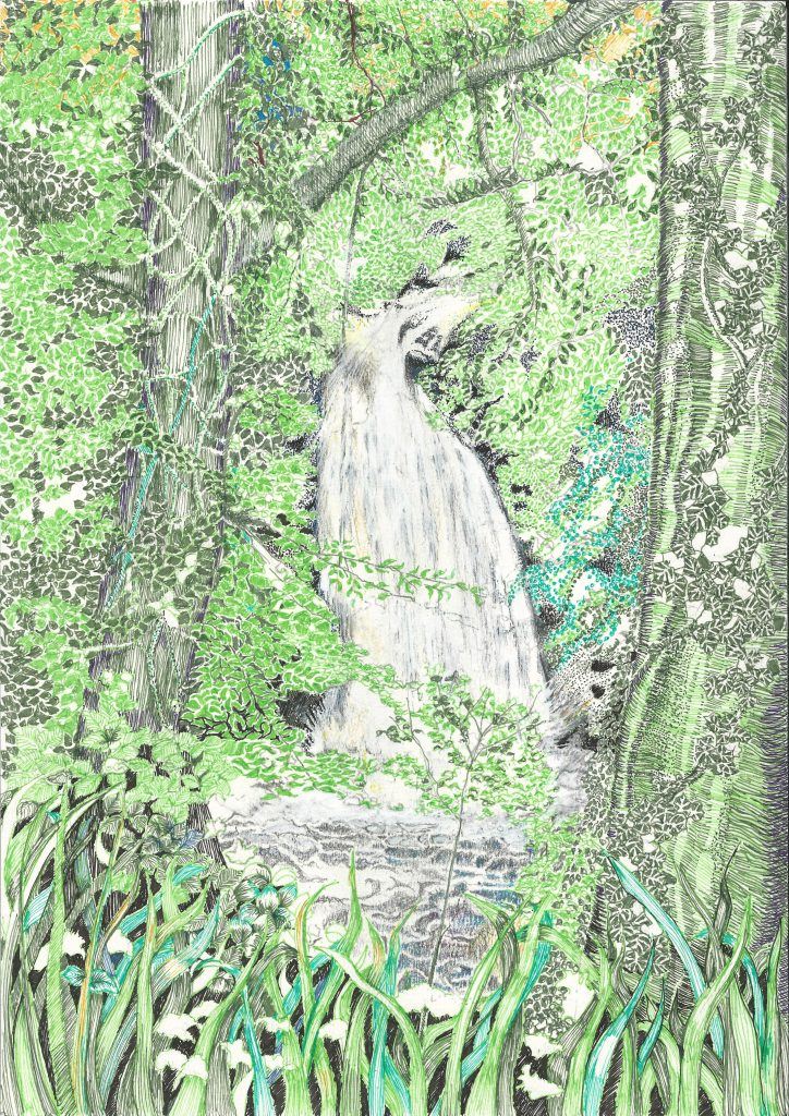 Pen and ink drawing of a waterfall surrounded by green trees