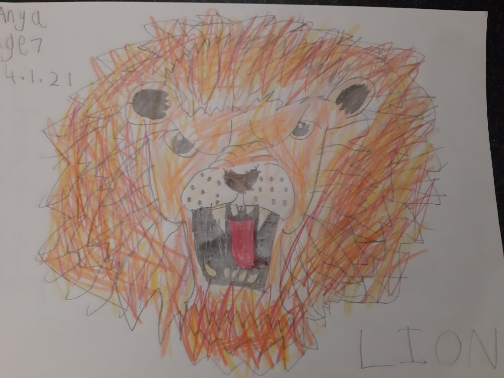 Drawing of a lion roaring, with big mane and large teeth.