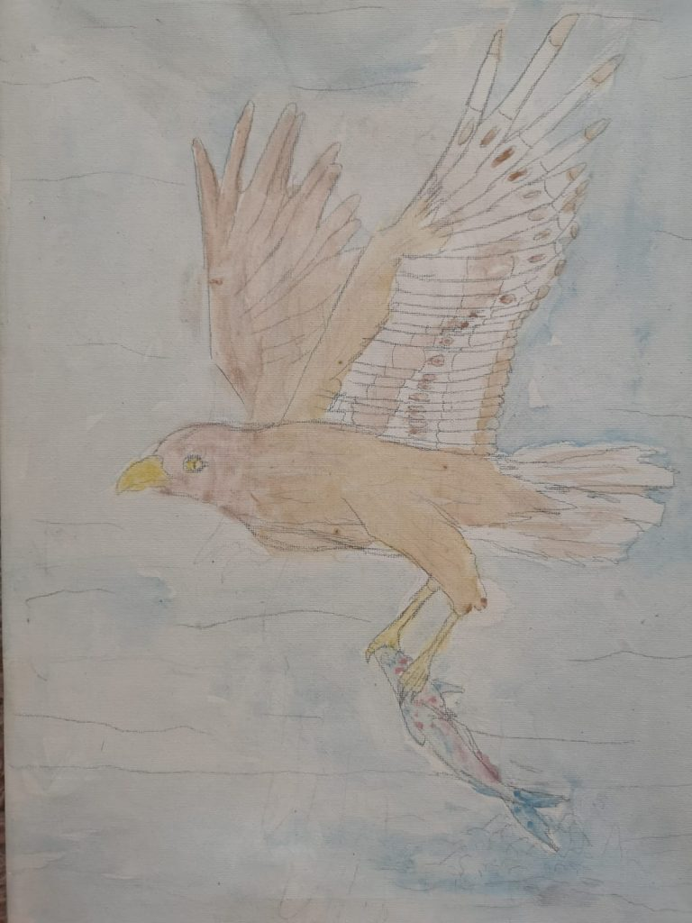 Artwork of a hawk in flight.