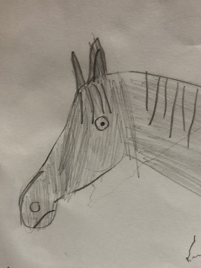 A pencil drawing of a horse.