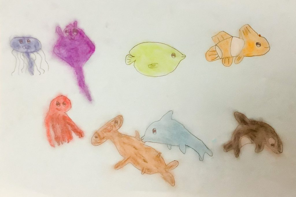 Coloured drawing of different ocean creatures.