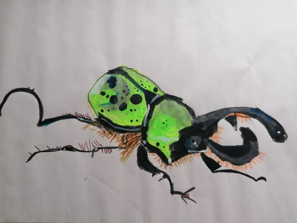 A detailed artwork of a green beetle.