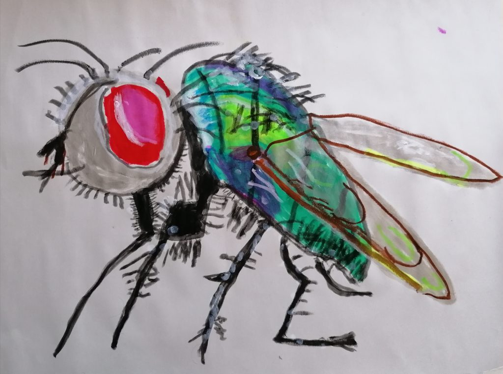 A detailed artwork of a fly.