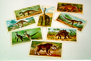 Eight small cards of dinosaurs and prehistoric animals.