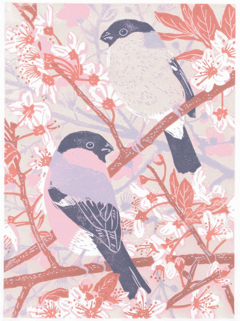 Lino print of two bullfinches sat on a blossom branch