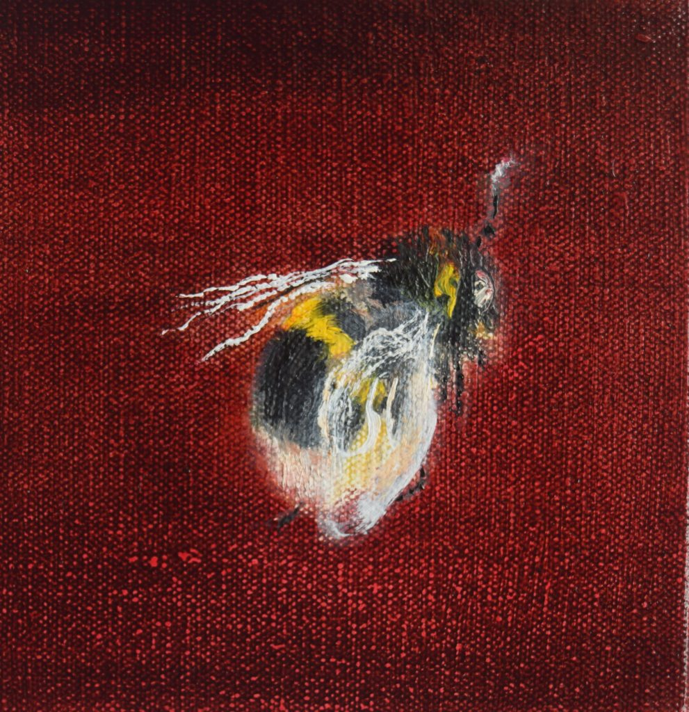 Oil painting of a bee on a red background – from the side