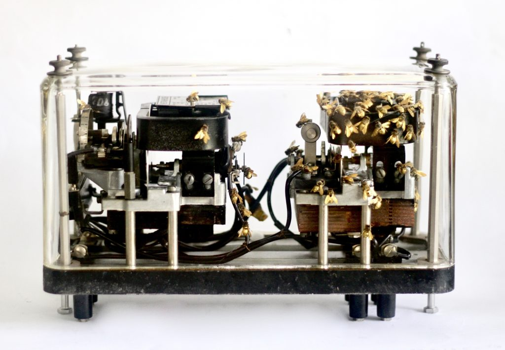 Mixed media sculpture of bees within a mechanical glass box