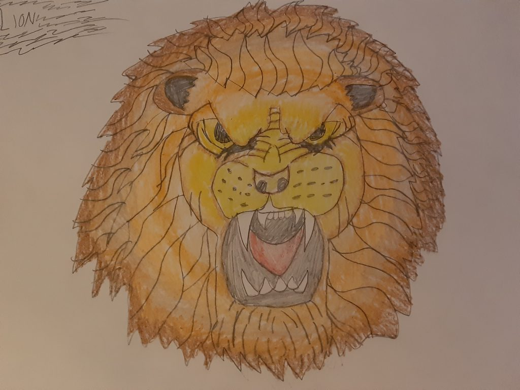 Drawing of a roaring lion with large mane and sharp teeth.