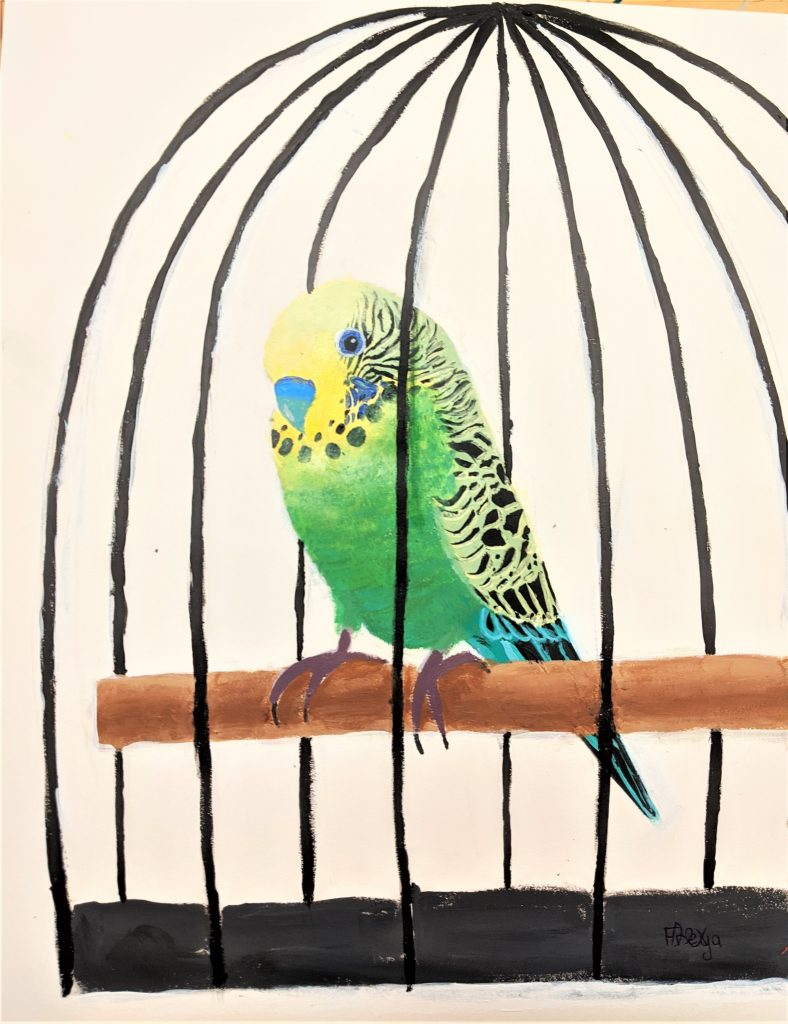 Detailed artwork of a green budgie in a cage.