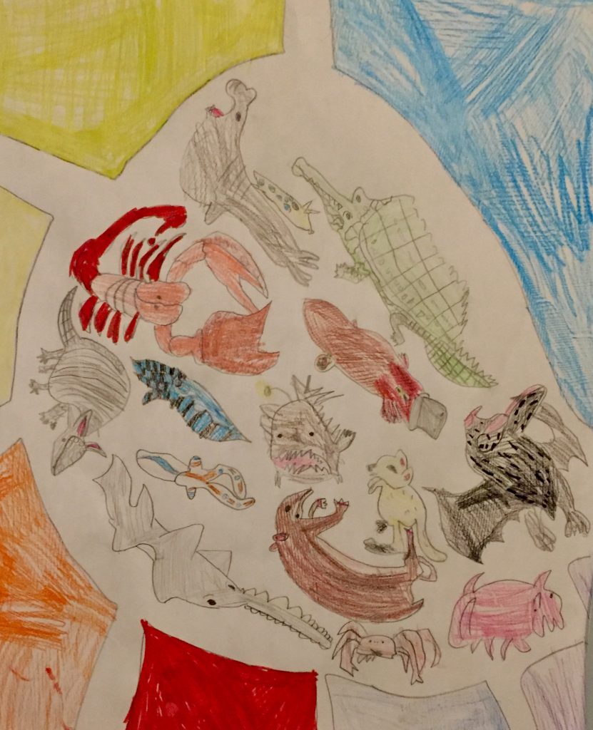 Drawing of various different sea creatures.
