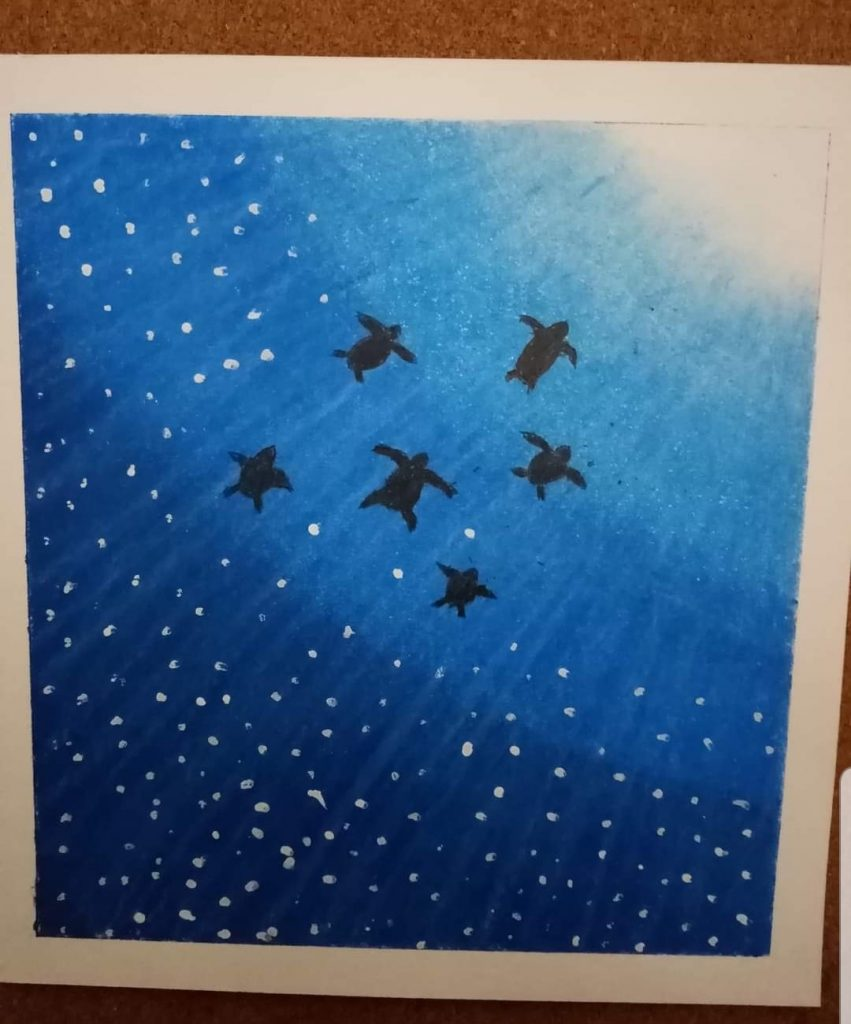 Artwork of six turtles swimming against a deep blue gradient background.