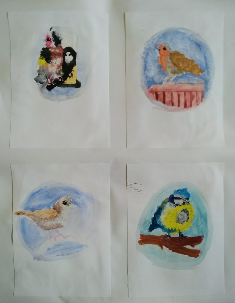 Four paintings of different birds.