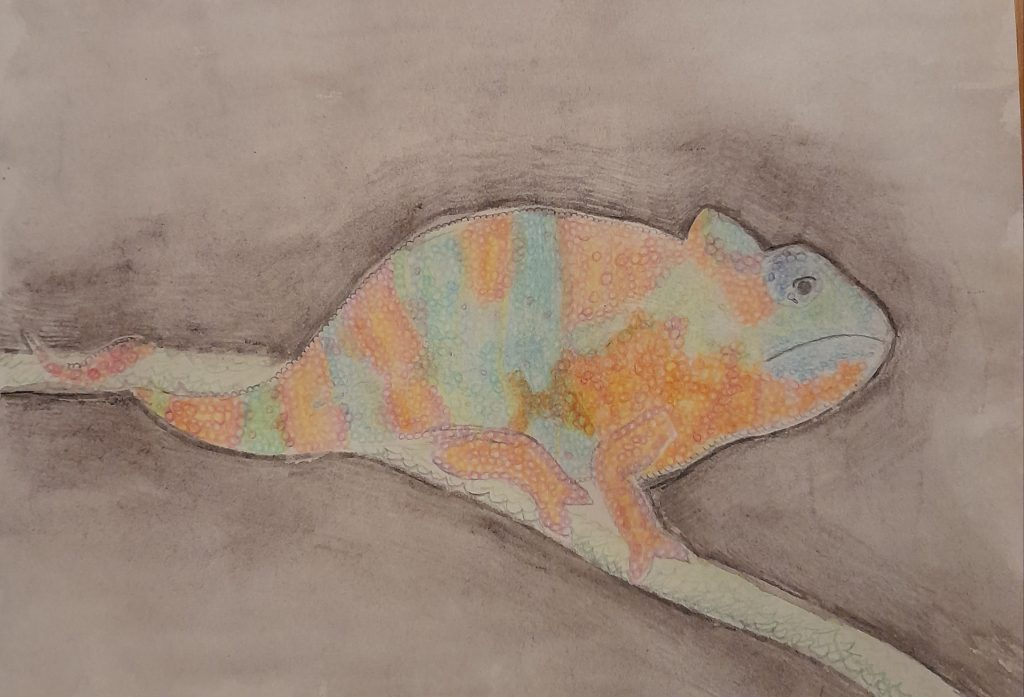 A drawing of a chameleon in muted pastel tones.